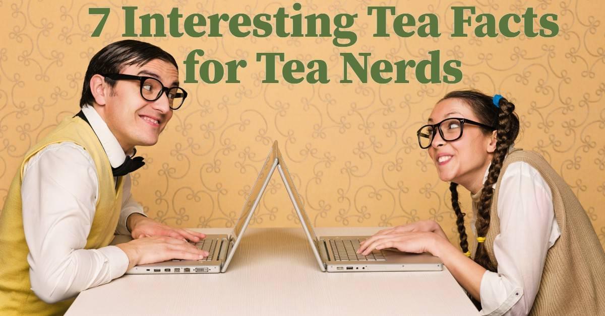 Interesting tea facts for tea nerds