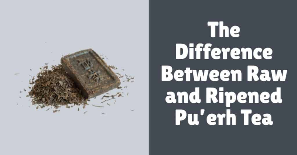 Difference between raw and ripened pu-erh tea