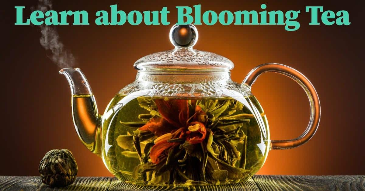 glass teapot with blooming tea