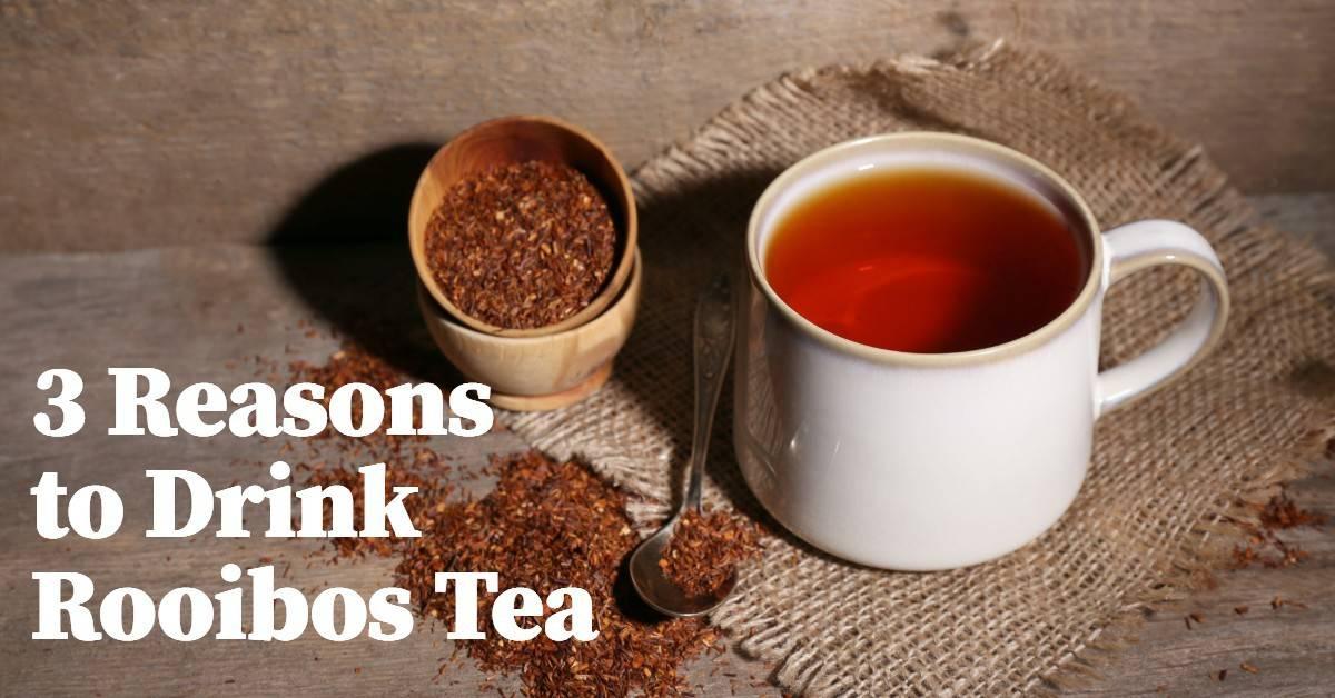 reasons to drink rooibos tea